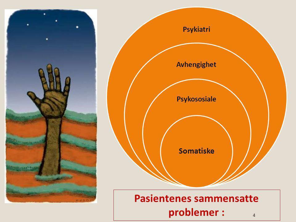 Psykiatri Avhengighet Psykososiale Somatiske Pasientenes sammensatte problemer : 4