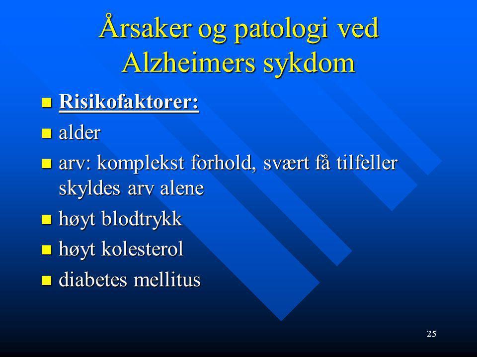 24 Årsaker og patologi ved Alzheimers sykdom Alzheimer hjerne Normal hjerne