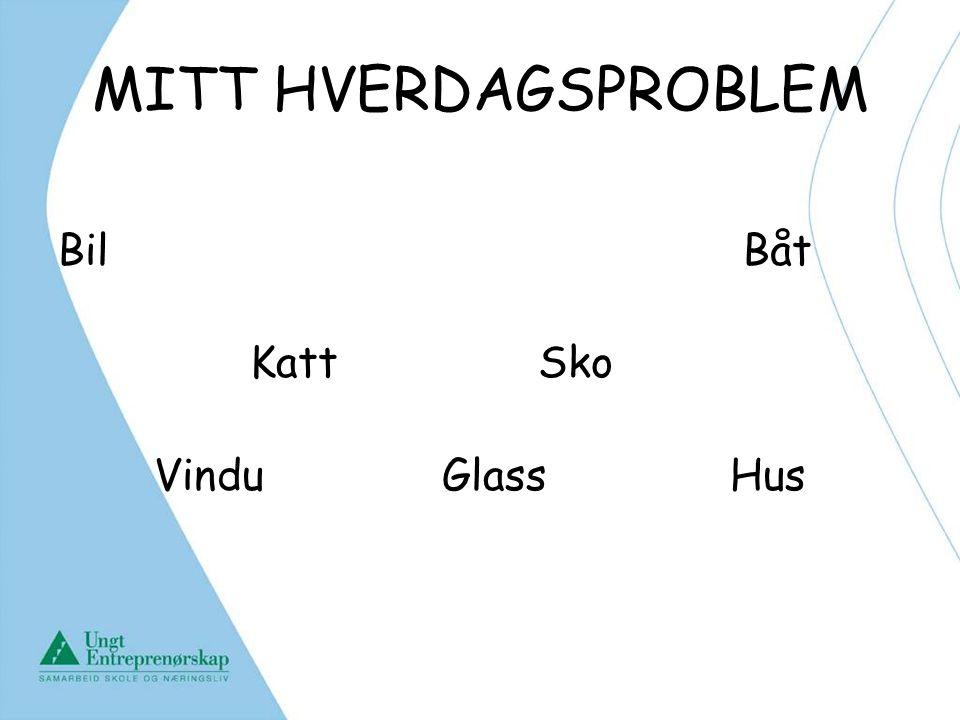 MITT HVERDAGSPROBLEM Bil Båt KattSko VinduGlassHus