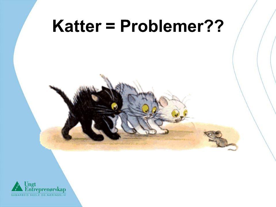 Katter = Problemer??