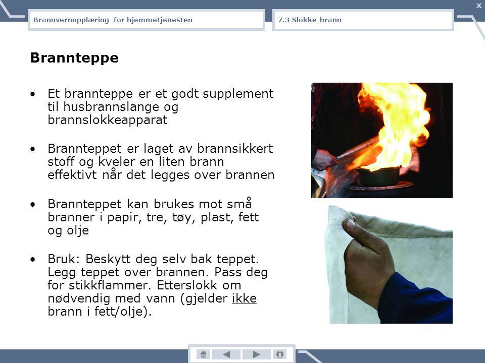 Brannvernopplæring for hjemmetjenesten X 7.2 Slokke brann Lær å slokke Videosnutten finnes kun på cd-romversjonen av undervisningsopplegget.