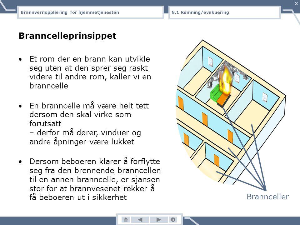 Brannvernopplæring for hjemmetjenesten X Brannrøyk inneholder kvelende, giftige gasser Blant de farligste røykgassene er kullos (CO), som er en usynli