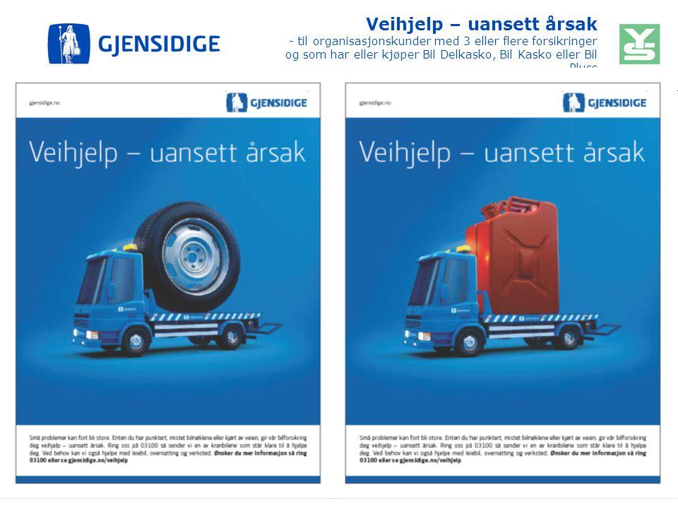 Veihjelp – uansett årsak - til organisasjonskunder med 3 eller flere forsikringer og som har eller kjøper Bil Delkasko, Bil Kasko eller Bil Pluss 16