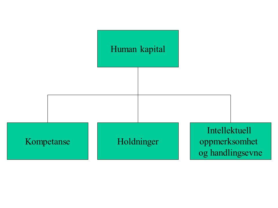 KompetanseHoldninger Intellektuell oppmerksomhet og handlingsevne Human kapital