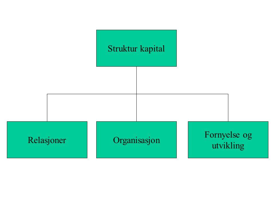 RelasjonerOrganisasjon Fornyelse og utvikling Struktur kapital