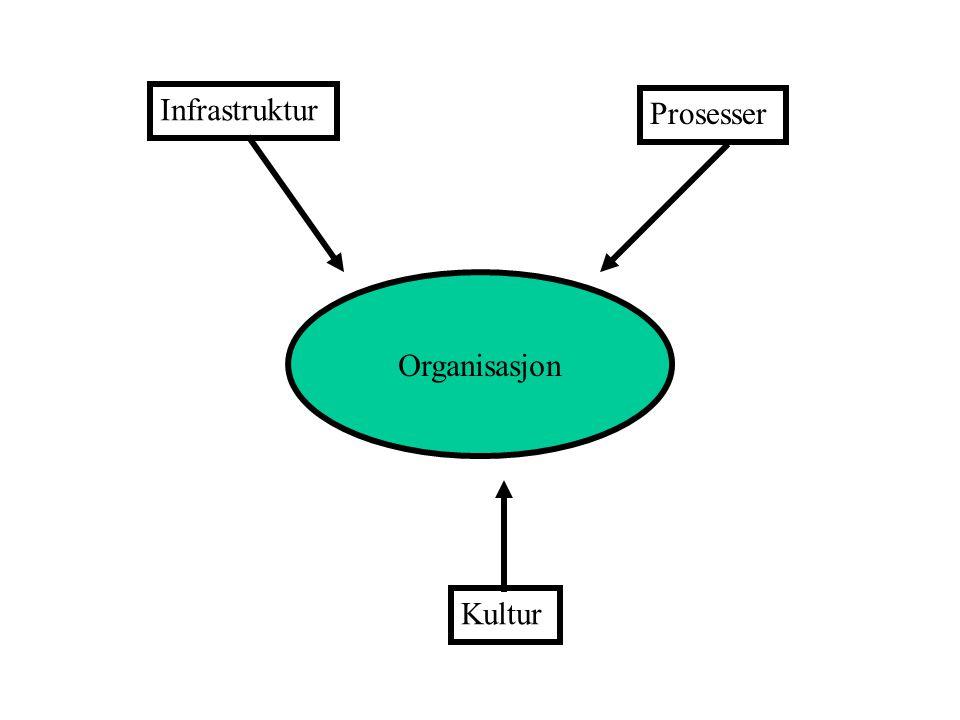 Organisasjon Infrastruktur Kultur Prosesser