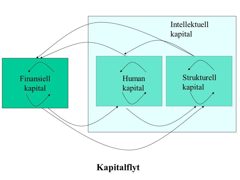 Finansiell kapital Human kapital Strukturell kapital Kapitalflyt Intellektuell kapital