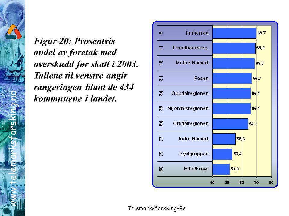 www.telemarksforsking.no Telemarksforsking-Bø Figur 20: Prosentvis andel av foretak med overskudd før skatt i 2003.