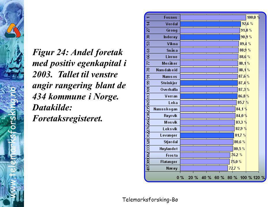 www.telemarksforsking.no Telemarksforsking-Bø Figur 24: Andel foretak med positiv egenkapital i 2003.