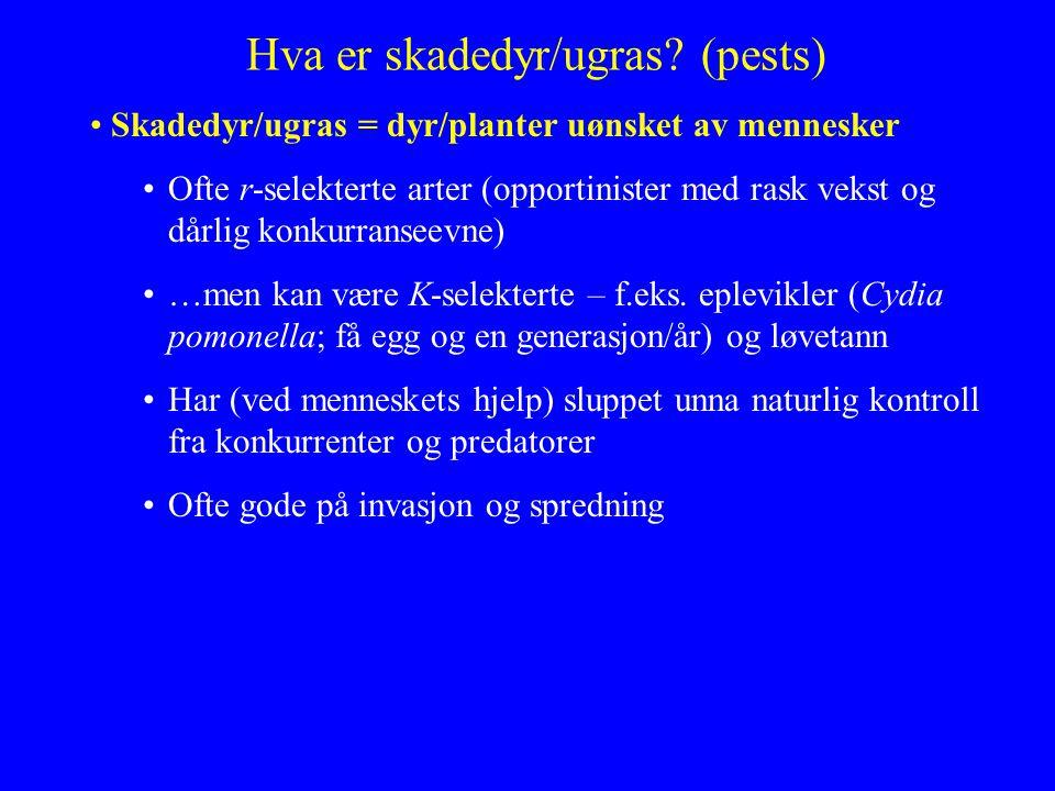 Hva er skadedyr/ugras? (pests) Skadedyr/ugras = dyr/planter uønsket av mennesker Ofte r-selekterte arter (opportinister med rask vekst og dårlig konku
