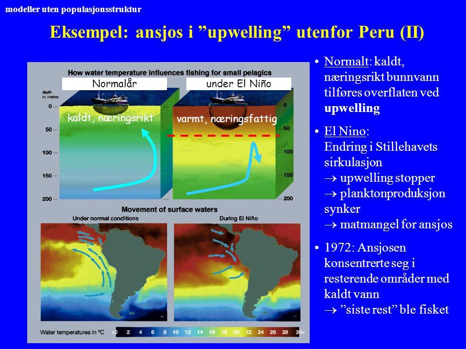 "Eksempel: ansjos i ""upwelling"" utenfor Peru (II) kaldt, næringsrikt varmt, næringsfattig Normalårunder El Niño Normalt: kaldt, næringsrikt bunnvann ti"