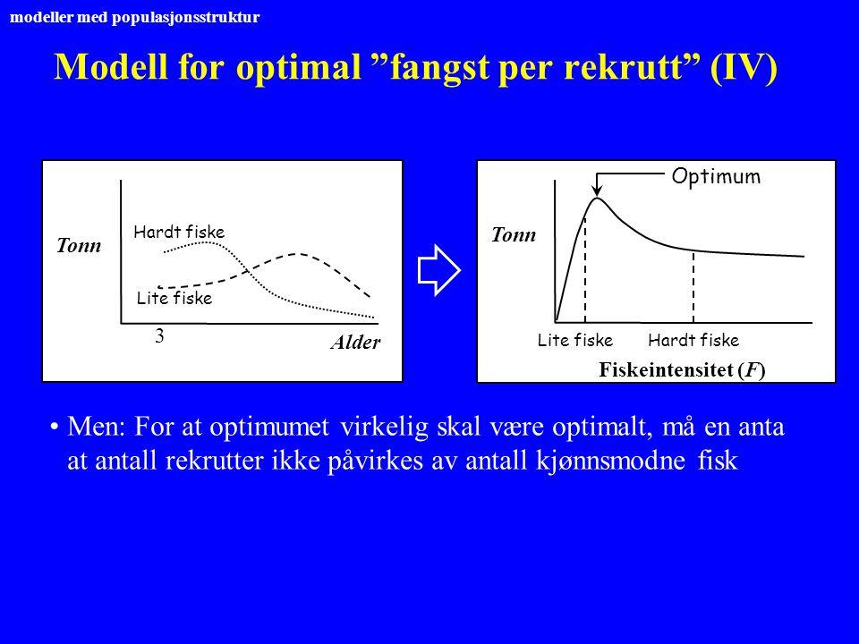 """Modell for optimal """"fangst per rekrutt"""" (IV) Men: For at optimumet virkelig skal være optimalt, må en anta at antall rekrutter ikke påvirkes av antall"""