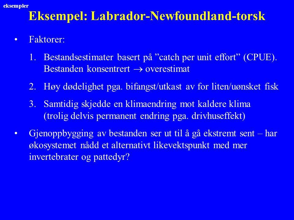 """Eksempel: Labrador-Newfoundland-torsk Faktorer: 1.Bestandsestimater basert på """"catch per unit effort"""" (CPUE). Bestanden konsentrert  overestimat 2.Hø"""