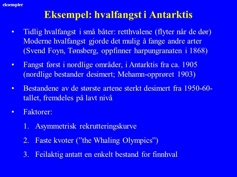 Eksempel: hvalfangst i Antarktis Tidlig hvalfangst i små båter: retthvalene (flyter når de dør) Moderne hvalfangst gjorde det mulig å fange andre arte