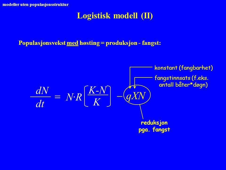 Logistisk modell (II) dNdN  dt K-N N·RN·R  qXN reduksjon pga. fangst konstant (fangbarhet) fangstinnsats (f.eks. antall båter*døgn) modeller uten po