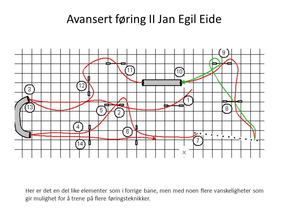 Avansert føring II Jan Egil Eide Her er det en del like elementer som i forrige bane, men med noen flere vanskeligheter som gir mulighet for å trene på flere føringsteknikker.