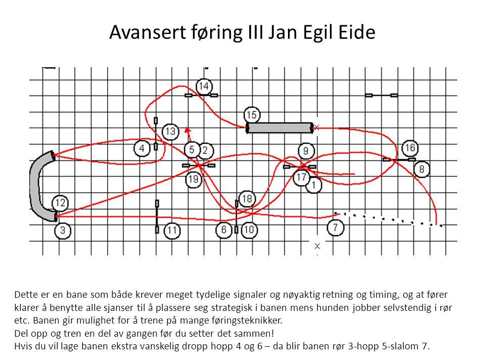 Avansert føring III Jan Egil Eide Dette er en bane som både krever meget tydelige signaler og nøyaktig retning og timing, og at fører klarer å benytte alle sjanser til å plassere seg strategisk i banen mens hunden jobber selvstendig i rør etc.