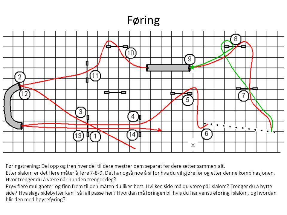 Føring Føringstrening: Del opp og tren hver del til dere mestrer dem separat før dere setter sammen alt. Etter slalom er det flere måter å føre 7-8-9.