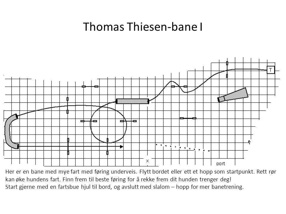 Thomas Thiesen-bane I Her er en bane med mye fart med føring underveis. Flytt bordet eller ett et hopp som startpunkt. Rett rør kan øke hundens fart.