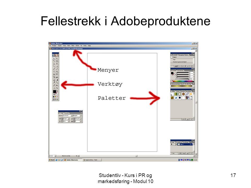 Studentliv - Kurs i PR og markedsføring - Modul 10 17 Fellestrekk i Adobeproduktene