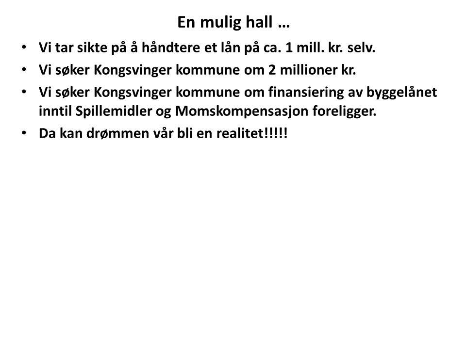 En mulig hall … Vi tar sikte på å håndtere et lån på ca. 1 mill. kr. selv. Vi søker Kongsvinger kommune om 2 millioner kr. Vi søker Kongsvinger kommun