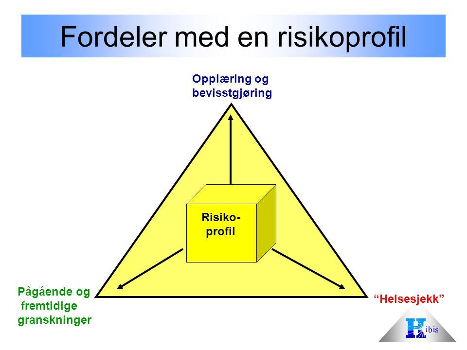 Opplæring og bevisstgjøring Pågående og fremtidige granskninger Helsesjekk Risiko- profil Fordeler med en risikoprofil