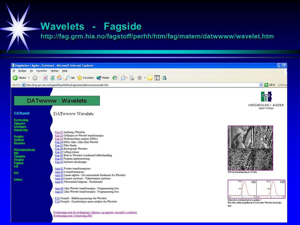 Prosjekter våren 2004 Matematisk behandling av medisinsk bilde-informasjon Ubegrenset sett av oppgaver av alle vanskelighetsgrader (fra ingen matematikk til avansert matematikk) - Bruk av Wavelets til å bestemme blodårekanter fra ultralydbilder.