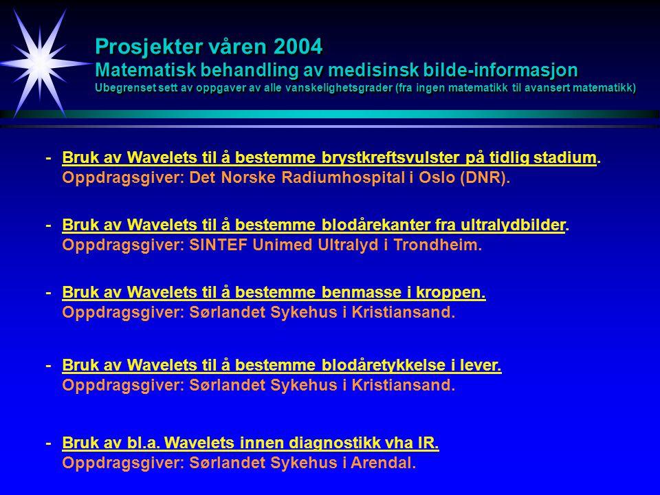 Prosjekter våren 2004 Matematisk behandling av medisinsk bilde-informasjon Ubegrenset sett av oppgaver av alle vanskelighetsgrader (fra ingen matemati