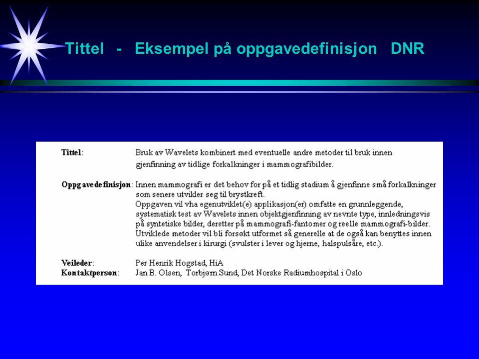 Tittel - Eksempel på oppgavedefinisjon DNR