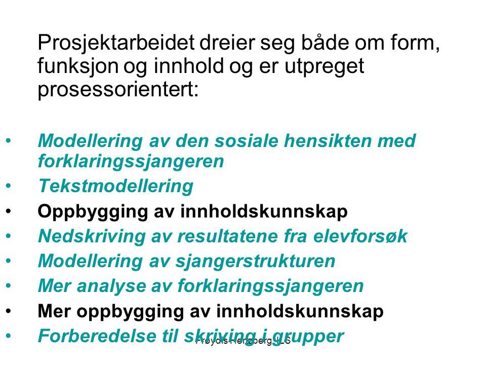 Frøydis Hertzberg, ILS Prosjektarbeidet dreier seg både om form, funksjon og innhold og er utpreget prosessorientert: Modellering av den sosiale hensi