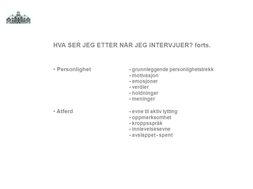 HVA SER JEG ETTER NÅR JEG INTERVJUER.forts.