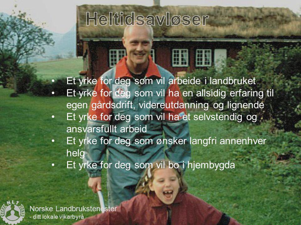 Et yrke for deg som vil bestemme din egen arbeidstid Et yrke for deg som har tid til overs, og vil fylle denne tiden med noe nyttig Et yrke for å finansiere skolegang, bilkjøp og lignende Et yrke for deg som vil ha arbeidserfaring Et yrke for deg som er hjemmeværende, og vil ha avveksling i hverdagen Norske Landbrukstenester - ditt lokale vikarbyrå