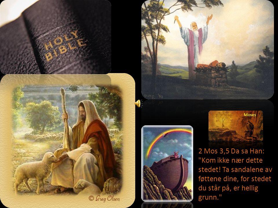 Hva er viktigist for deg.Hvor i Bibelen finner du dette.