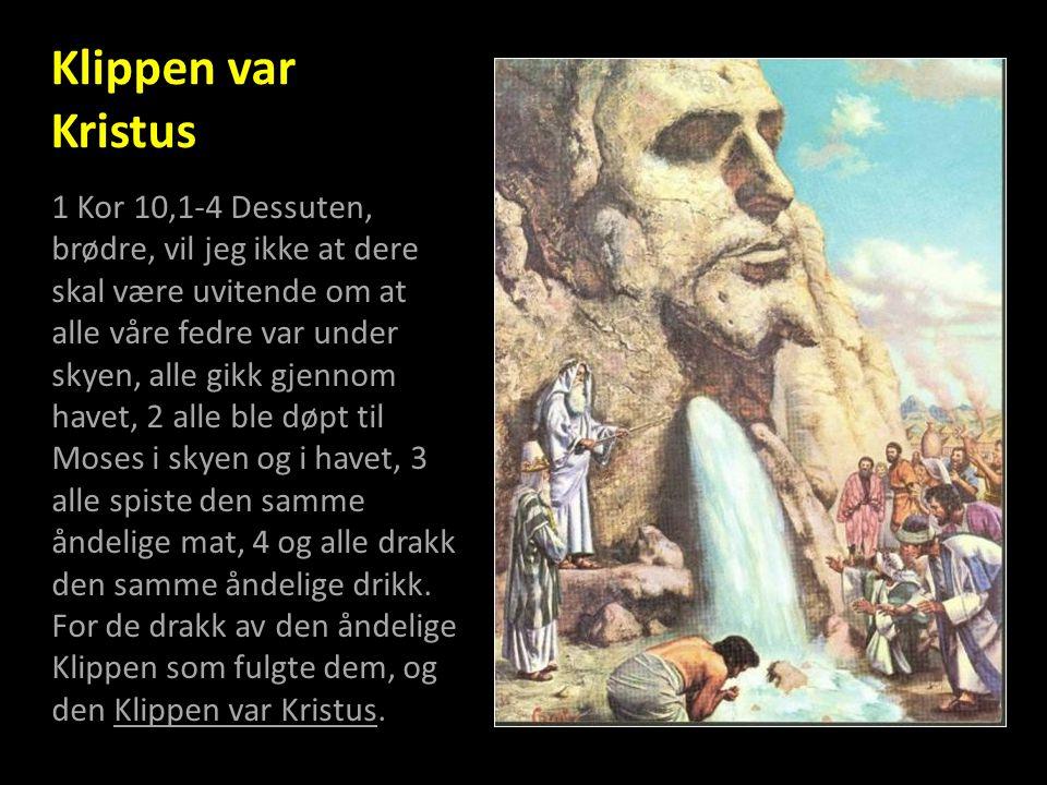 Klippen var Kristus 1 Kor 10,1-4 Dessuten, brødre, vil jeg ikke at dere skal være uvitende om at alle våre fedre var under skyen, alle gikk gjennom ha