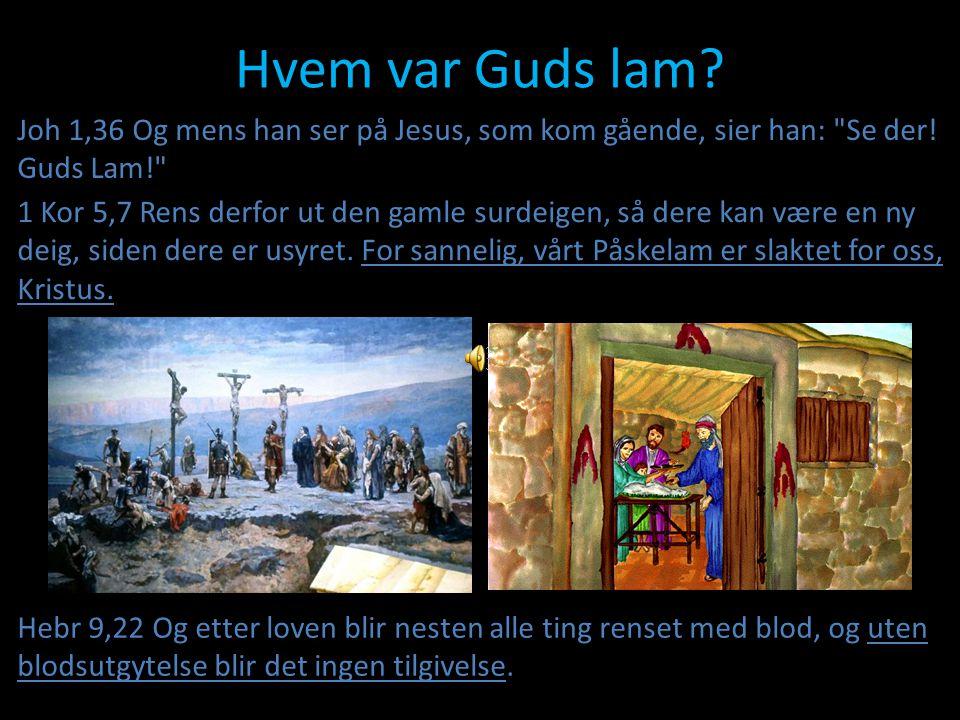 Hvem var Guds lam? Hebr 9,22 Og etter loven blir nesten alle ting renset med blod, og uten blodsutgytelse blir det ingen tilgivelse. 1 Kor 5,7 Rens de