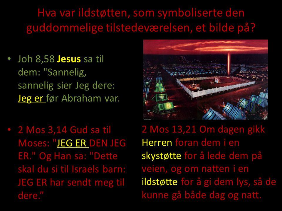 Hva var ildstøtten, som symboliserte den guddommelige tilstedeværelsen, et bilde på? Joh 8,58 Jesus sa til dem: