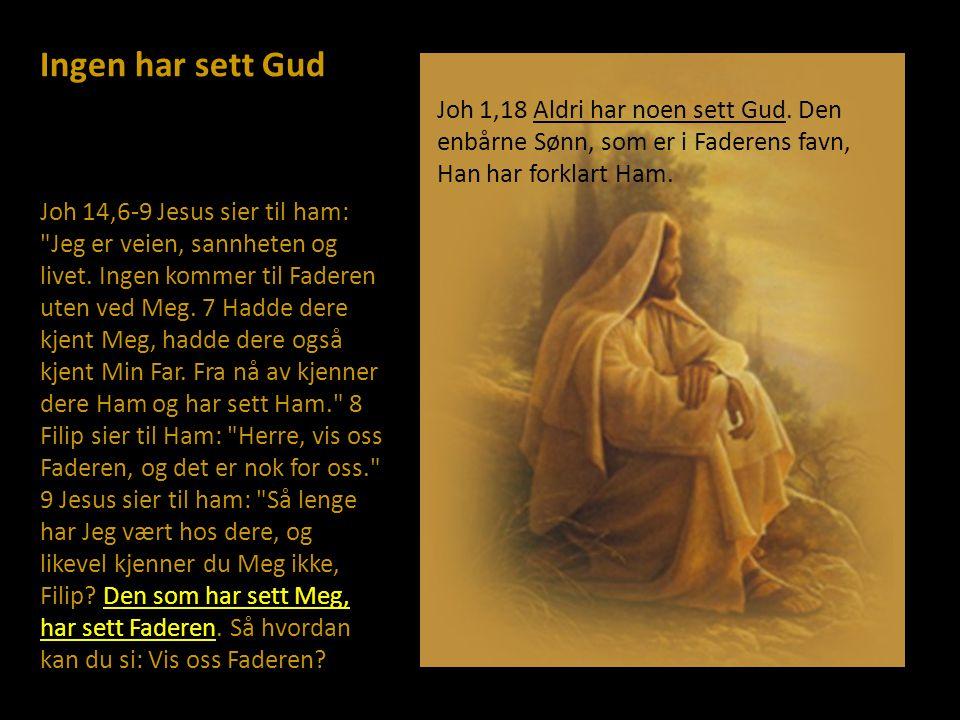 Ingen har sett Gud Joh 14,6-9 Jesus sier til ham: