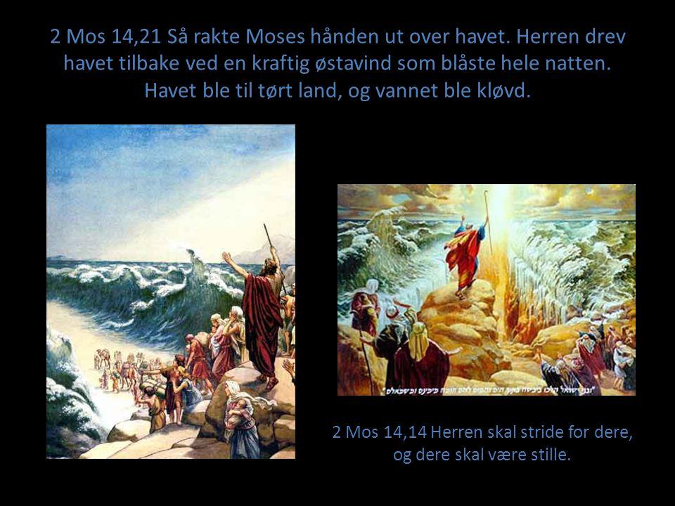 2 Mos 14,21 Så rakte Moses hånden ut over havet. Herren drev havet tilbake ved en kraftig østavind som blåste hele natten. Havet ble til tørt land, og