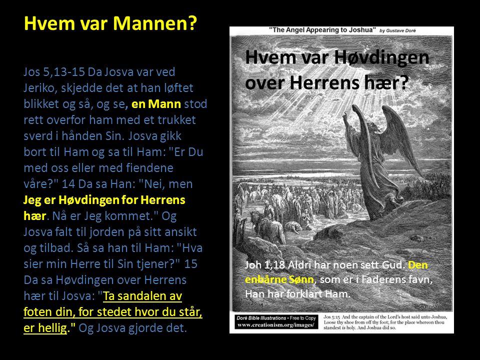 Guds Sønn Dan 3,28 Nebukadnesar tok til orde og sa: Lovet være Sjadraks, Mesjaks og Abed- Negos Gud, som sendte Sin Engel og utfridde tjenerne Sine, de som stolte på Ham.