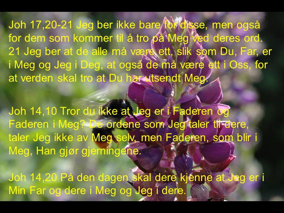 Joh 17,20-21 Jeg ber ikke bare for disse, men også for dem som kommer til å tro på Meg ved deres ord.
