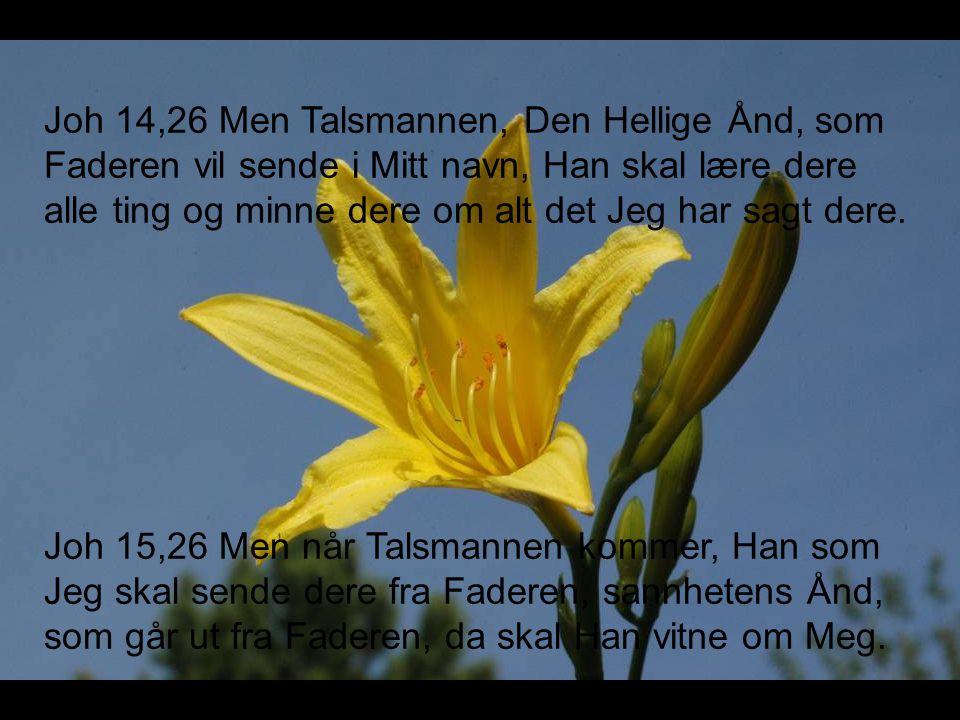Joh 14,26 Men Talsmannen, Den Hellige Ånd, som Faderen vil sende i Mitt navn, Han skal lære dere alle ting og minne dere om alt det Jeg har sagt dere.