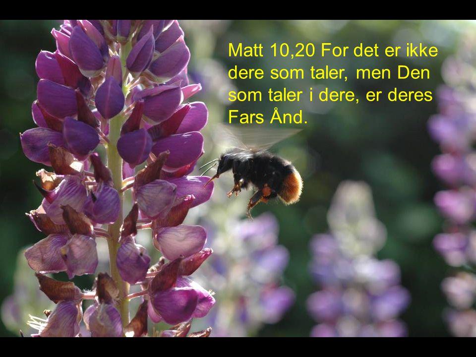 Matt 10,20 For det er ikke dere som taler, men Den som taler i dere, er deres Fars Ånd.