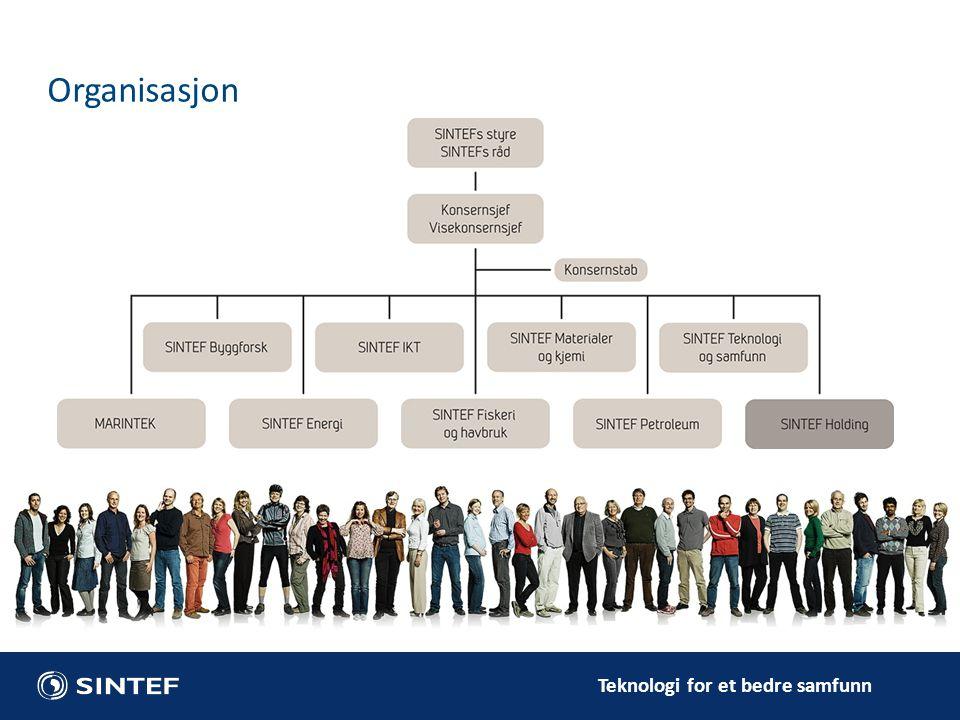 Teknologi for et bedre samfunn Organisasjon