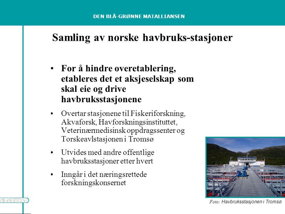 DEN BLÅ-GRØNNE MATALLIANSEN Samling av norske havbruks-stasjoner For å hindre overetablering, etableres det et aksjeselskap som skal eie og drive havbruksstasjonene Overtar stasjonene til Fiskeriforskning, Akvaforsk, Havforskningsinstituttet, Veterinærmedisinsk oppdragssenter og Torskeavlstasjonen i Tromsø Utvides med andre offentlige havbruksstasjoner etter hvert Inngår i det næringsrettede forskningskonsernet Foto: Havbruksstasjonen i Tromsø