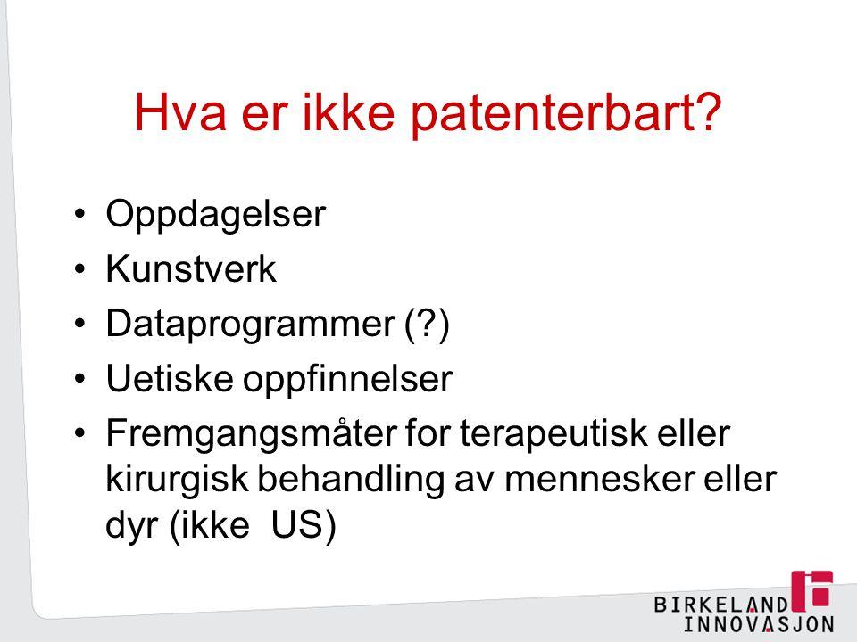 Hva er ikke patenterbart.