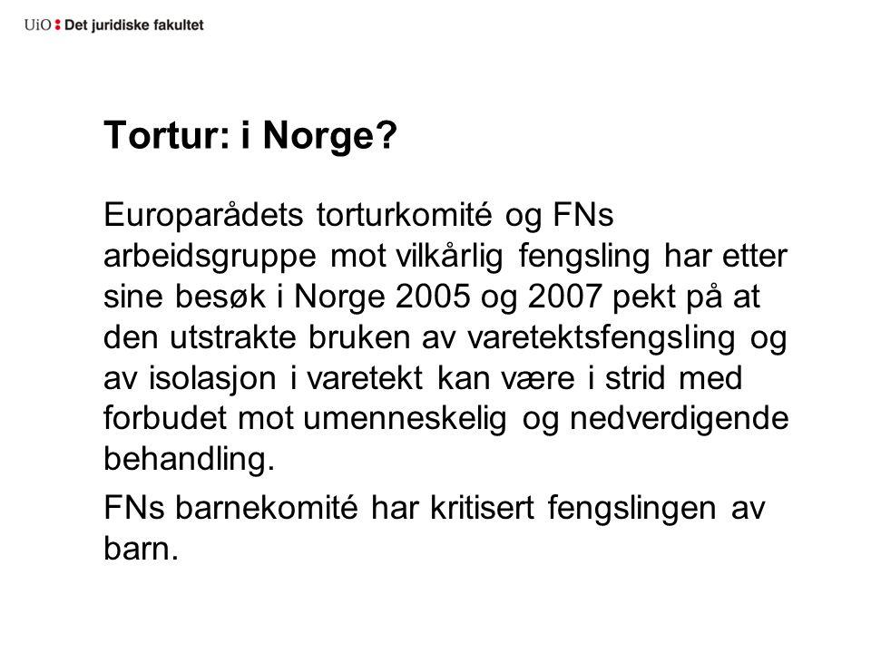 Tortur: i Norge? Europarådets torturkomité og FNs arbeidsgruppe mot vilkårlig fengsling har etter sine besøk i Norge 2005 og 2007 pekt på at den utstr