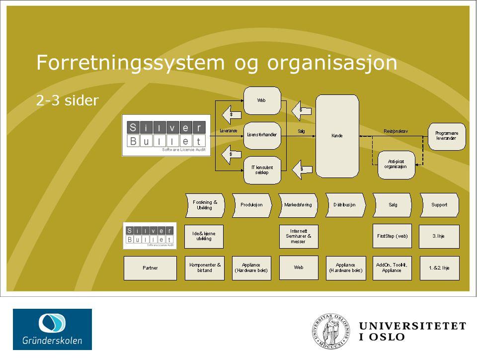 Forretningssystem og organisasjon 2-3 sider