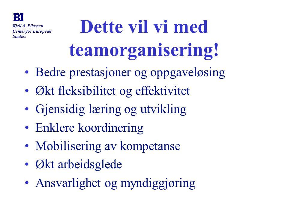 Kjell A. Eliassen Center for European Studies Dette vil vi med teamorganisering! Bedre prestasjoner og oppgaveløsing Økt fleksibilitet og effektivitet
