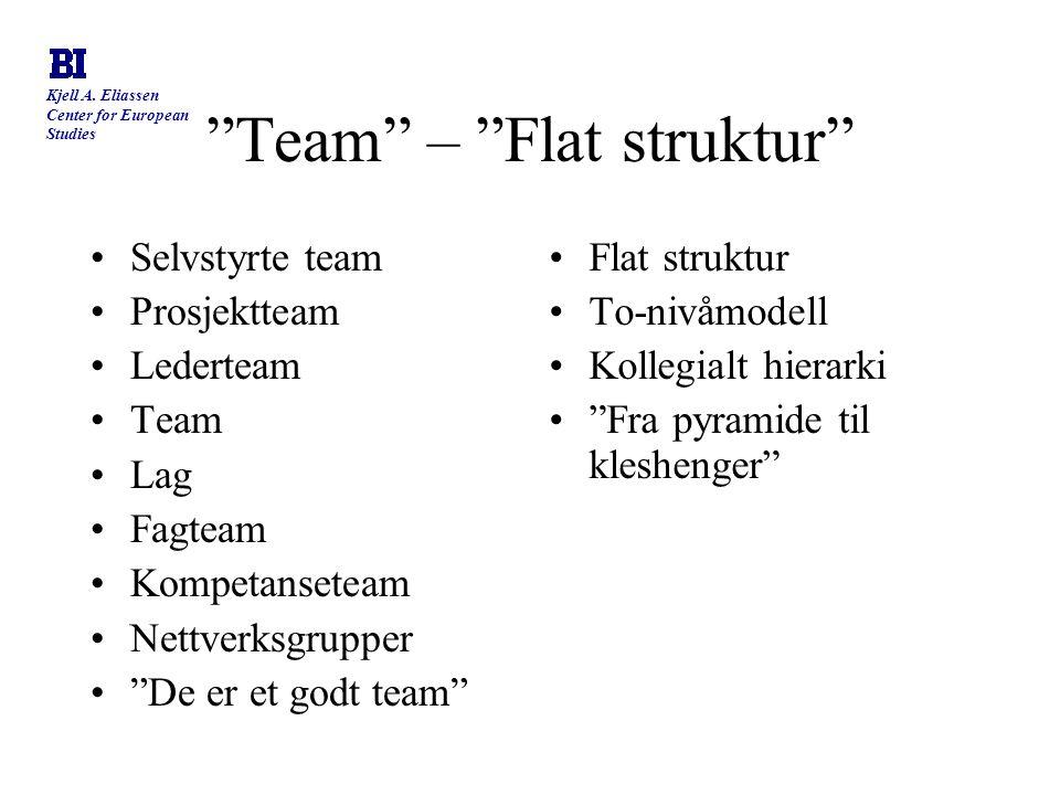 """Kjell A. Eliassen Center for European Studies """"Team"""" – """"Flat struktur"""" Selvstyrte team Prosjektteam Lederteam Team Lag Fagteam Kompetanseteam Nettverk"""