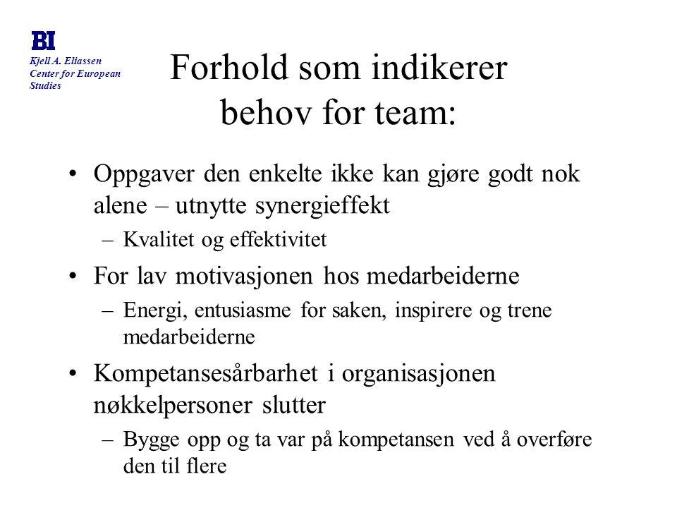 Kjell A. Eliassen Center for European Studies Forhold som indikerer behov for team: Oppgaver den enkelte ikke kan gjøre godt nok alene – utnytte syner